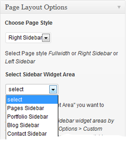Page Layout Options